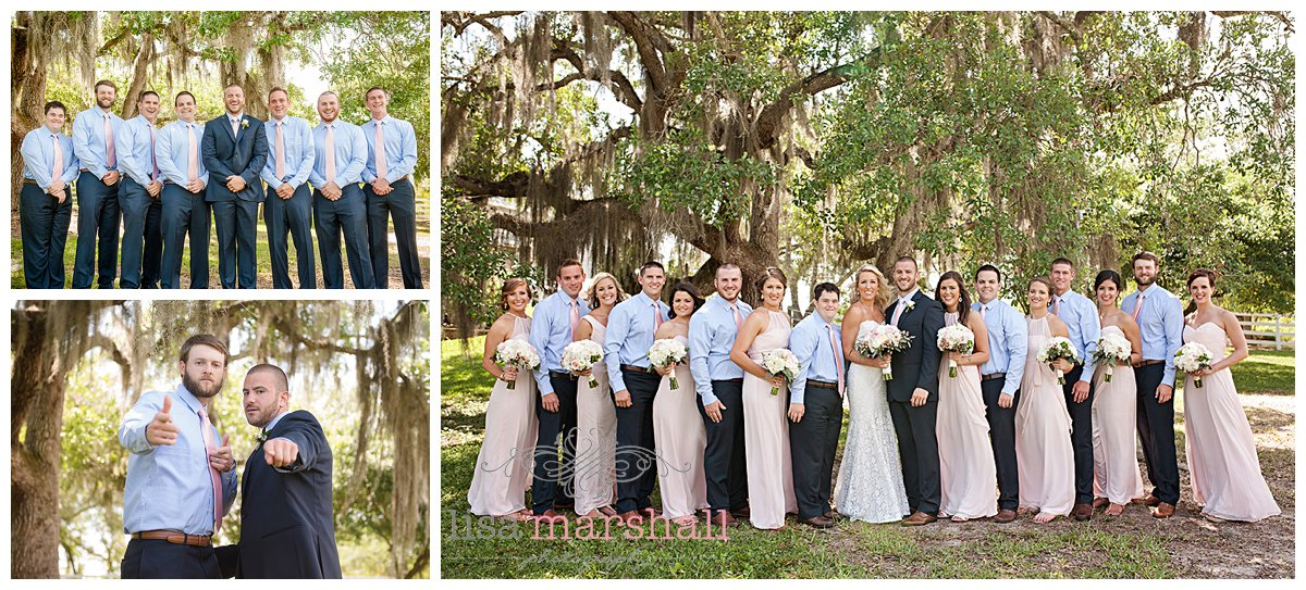 Lisa Marshall Photography