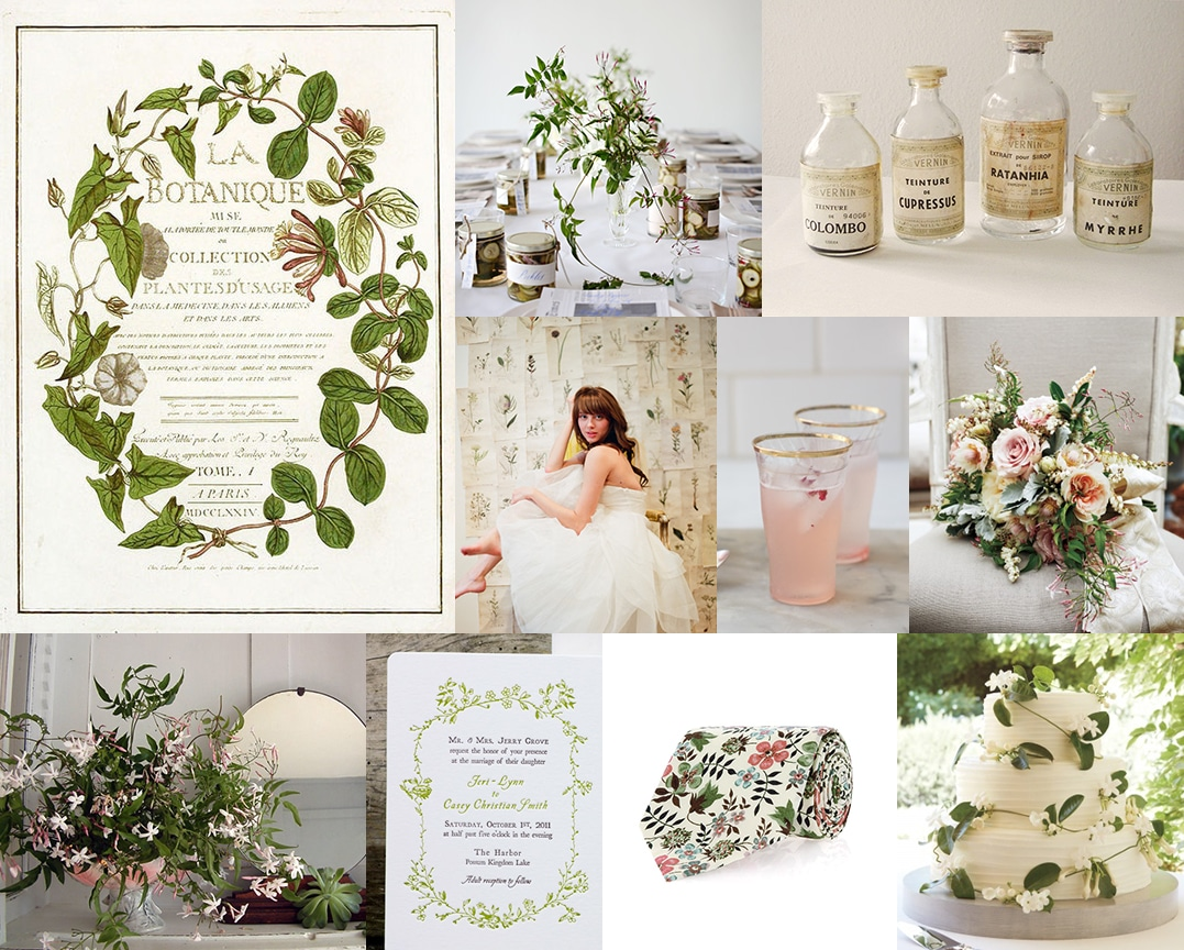 vintage-botanical-wedding-jasmine-vine - Up the Creek Farms